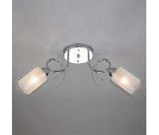Потолочный светильник 30122/2 хром